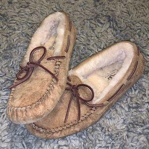 UGG Dakota slippers WORN ONCE color: chestnut